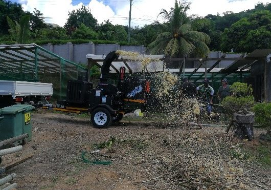 A TOMCAT 200 AFE Wood Chipper busy chipping palm fronds/palm leaves on Mahe, Seychelles.