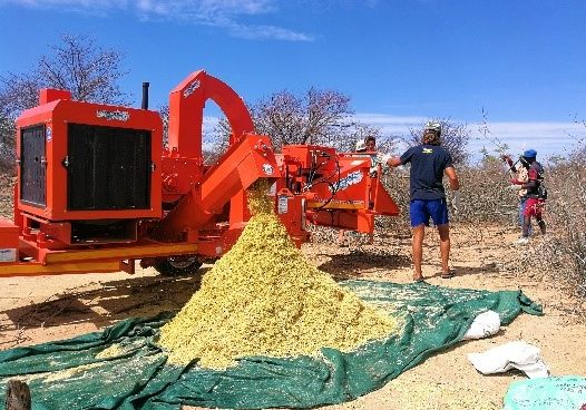 Swarthaak processed through a TOMCAT 150 AFE Chipper Shredder in Botswana to make animal feed.